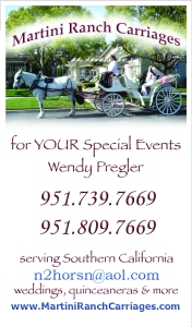 Martini Ranch Carriages Business Card