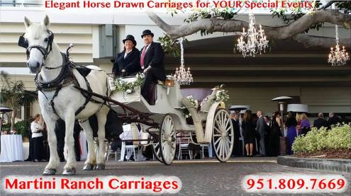 MartiniRanchCarriages.com